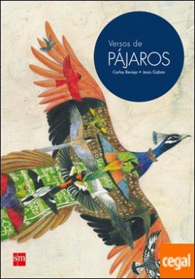 Versos de PÁJAROS