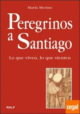 Peregrinos a Santiago. Lo que viven, lo que sienten