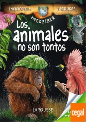 Los animales no son tontos