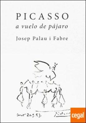 Picasso a vuelo de pajaro