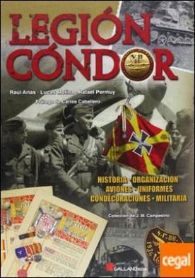 Legión Cóndor . estructura de una fuerza de combate