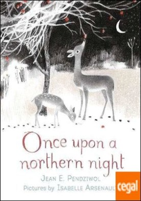 ONCE UPON A NORTHERN LIGHT