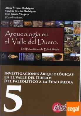 Investigaciones arqueologicas en el valle del Duero: Del Paleolitico a la Edad Media 5 por Álvarez Rodríguez, Alicia PDF