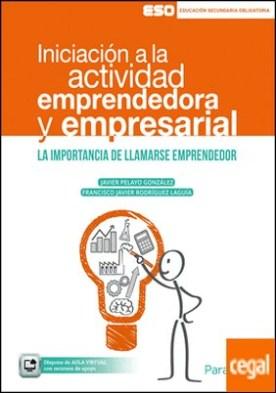 Iniciación a la actividad emprendedora y empresarial (ESO)