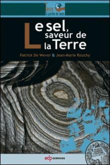 Le sel, saveur de la Terre-Patrick De Wever , Jean-Marie Rouchy