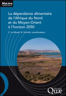 La dépendance alimentaire de l'Afrique du nord et du Moyen-Orient à l'horizon 2050-Chantal Le Mouël , Bertrand Schmitt