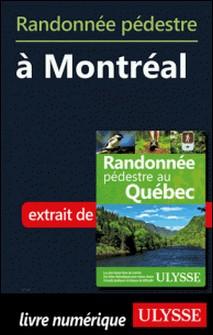 Randonnée pédestre à Montréal-Yves Séguin