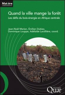 Quand la ville mange la forêt - Les défis du bois énergie en Afrique centrale-Jean-Noël Marien , Emilien Dubiez , Dominique Louppe , Adélaïde Larzillière