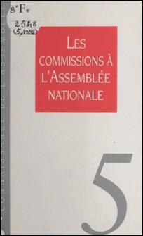 Les commissions à l'Assemblée nationale-Collectif