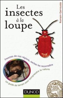 Les insectes à la loupe - Un guide de terrain pour découvrir la nature-Romain Garrouste