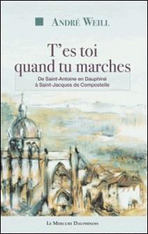 T'es toi quand tu marches. De Saint-Antoine en Dauphiné à Saint-Jacques de Compostelle-André Weill