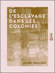 De l'esclavage dans les colonies - Pour servir d'introduction à l'Histoire de l'esclavage dans l'antiquité-Henri Wallon