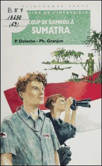 Coup de bambou à Sumatra-P Deloche , Philippe Granjon