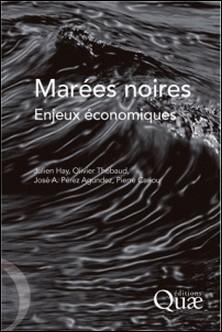 Marées noires - Enjeux économiques-Julien Hay , Olivier Thébaud , José A. Pérez Agundez , Pierre Cariou
