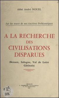 À la recherche des civilisations disparues - Beauce, Sologne, Val de Loire, Gâtinais-André Nouel