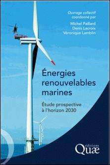 Energies renouvelables marines - Etude prospective à l'horizon 2030-Michel Paillard , Denis Lacroix , Véronique Lamblin