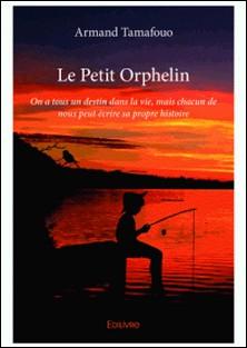 Le petit orphelin - On a tous un destin dans la vie, mais chacun de nous peut écrire sa propre histoire-Armand Tamafouo