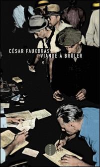 Viande à brûler - Journal d'un chômeur-César Fauxbras